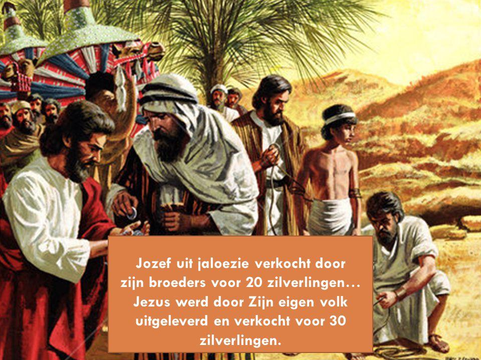 Jozef uit jaloezie verkocht door zijn broeders voor 20 zilverlingen… Jezus werd door Zijn eigen volk uitgeleverd en verkocht voor 30 zilverlingen.