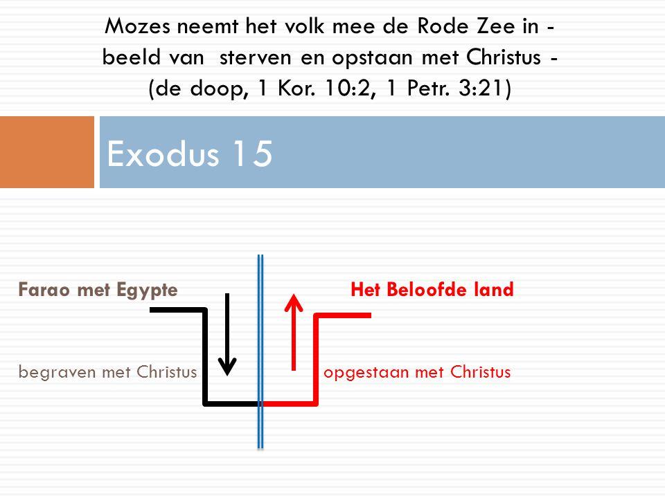 Farao met EgypteHet Beloofde land begraven met Christus opgestaan met Christus Exodus 15 Mozes neemt het volk mee de Rode Zee in - beeld van sterven e