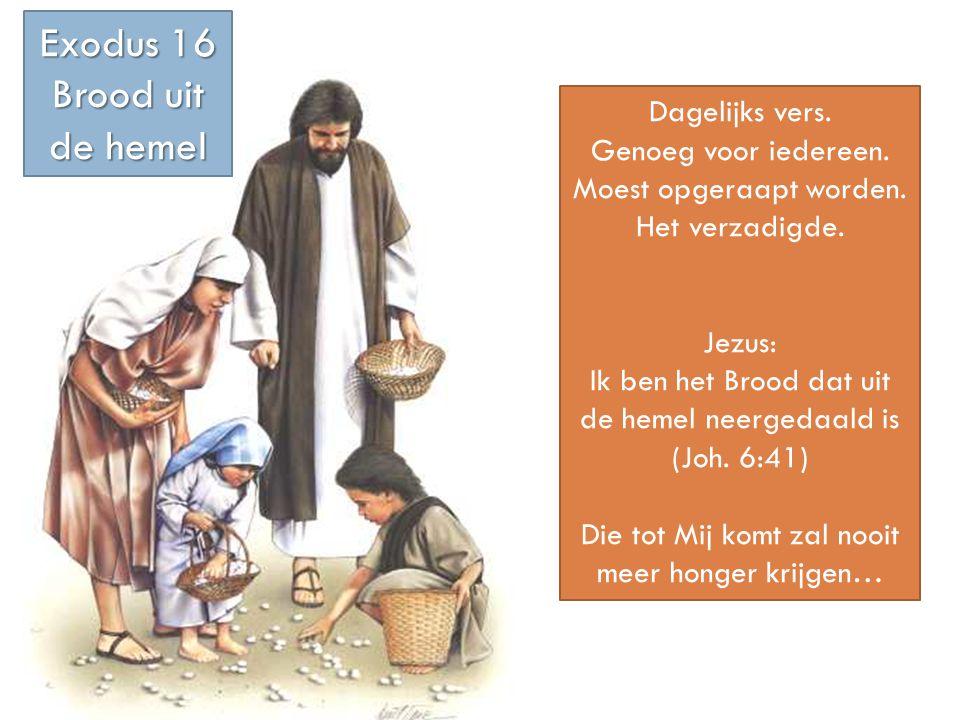 Dagelijks vers. Genoeg voor iedereen. Moest opgeraapt worden. Het verzadigde. Jezus: Ik ben het Brood dat uit de hemel neergedaald is (Joh. 6:41) Die