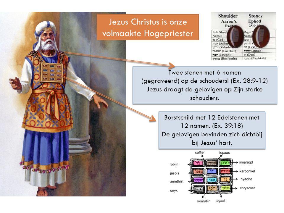 Jezus Christus is onze volmaakte Hogepriester Borstschild met 12 Edelstenen met 12 namen. (Ex. 39:18) De gelovigen bevinden zich dichtbij bij Jezus' h