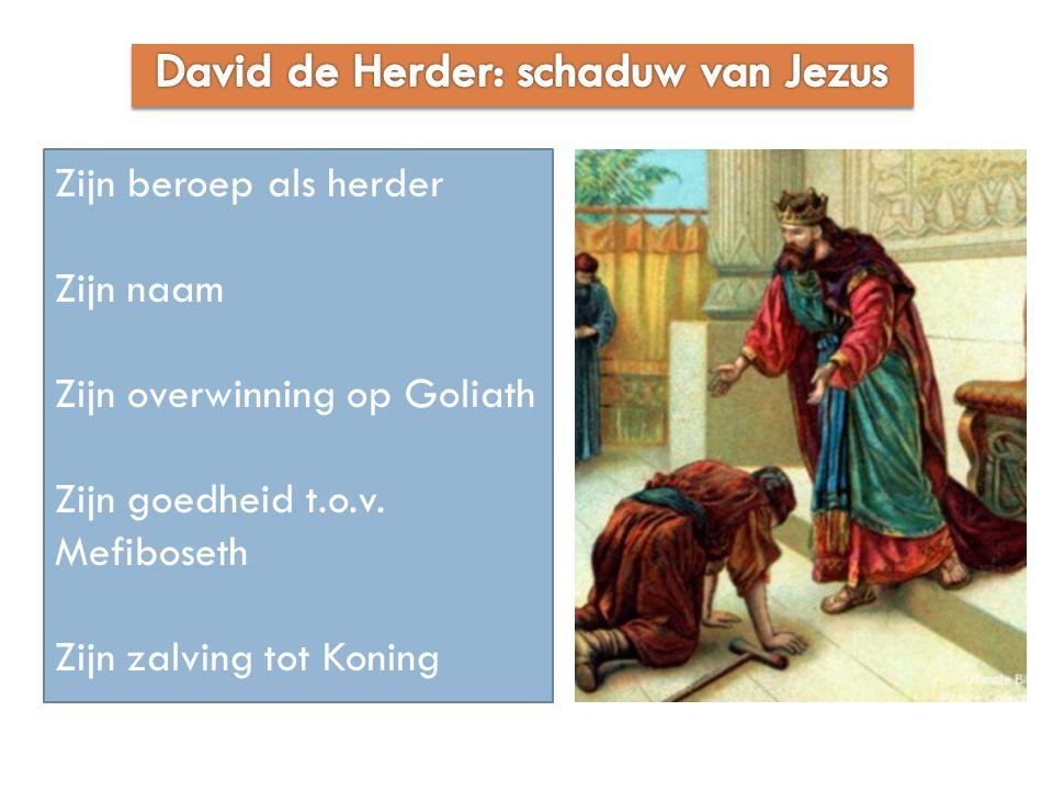 Zijn beroep als herder Zijn naam Zijn overwinning op Goliath Zijn goedheid t.o.v. Mefiboseth Zijn zalving tot Koning