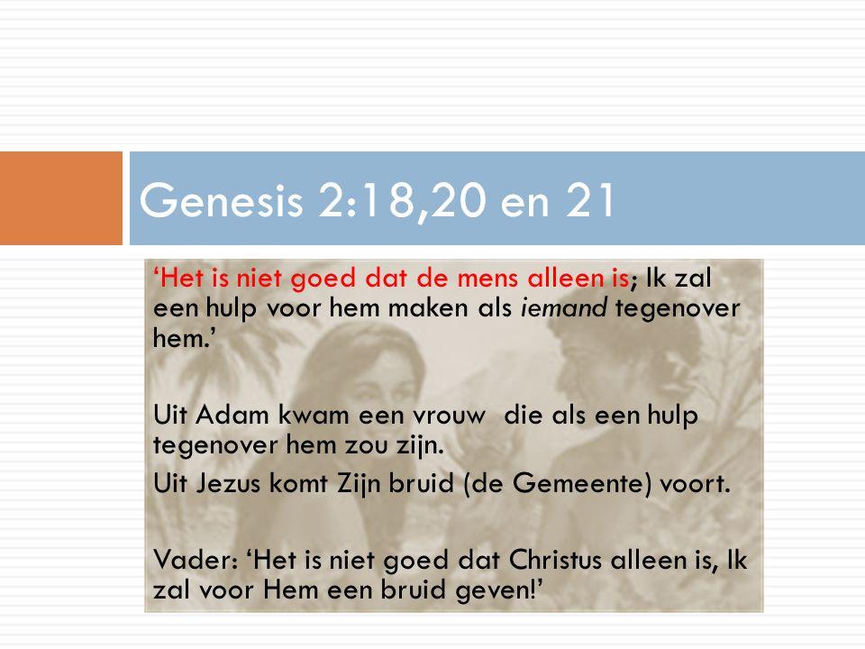 Vers 2 Izak en Jezus waren de enige en geliefde zoon van de vader.