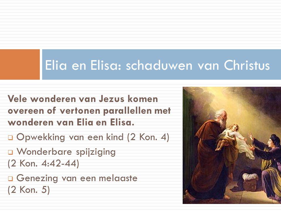 Vele wonderen van Jezus komen overeen of vertonen parallellen met wonderen van Elia en Elisa.  Opwekking van een kind (2 Kon. 4)  Wonderbare spijzig