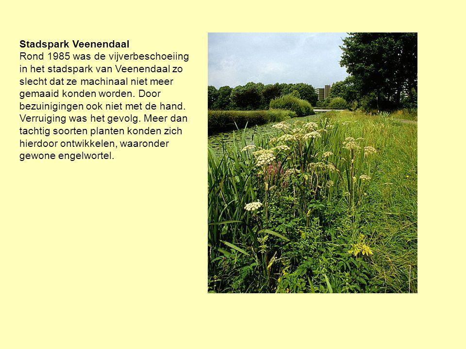 Stadspark Veenendaal Rond 1985 was de vijverbeschoeiing in het stadspark van Veenendaal zo slecht dat ze machinaal niet meer gemaaid konden worden. Do