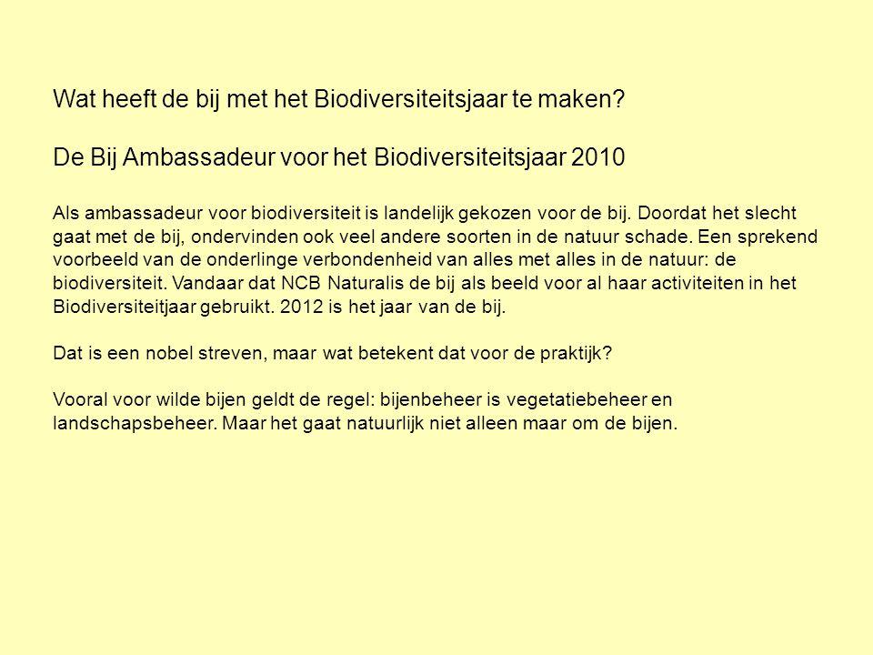 Wat heeft de bij met het Biodiversiteitsjaar te maken? De Bij Ambassadeur voor het Biodiversiteitsjaar 2010 Als ambassadeur voor biodiversiteit is lan