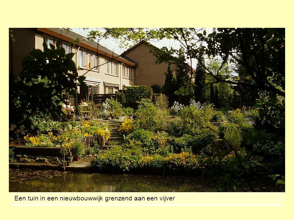 Een tuin in een nieuwbouwwijk grenzend aan een vijver