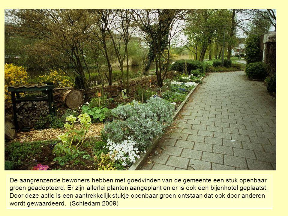 De aangrenzende bewoners hebben met goedvinden van de gemeente een stuk openbaar groen geadopteerd.
