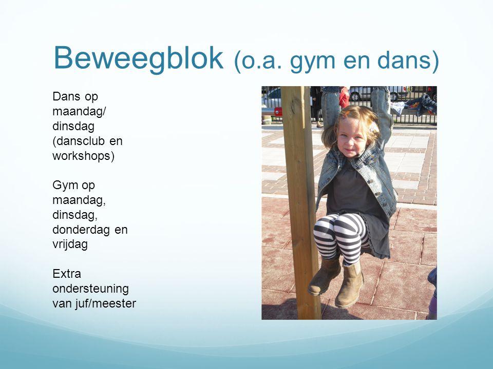 Beweegblok (o.a. gym en dans) Dans op maandag/ dinsdag (dansclub en workshops) Gym op maandag, dinsdag, donderdag en vrijdag Extra ondersteuning van j
