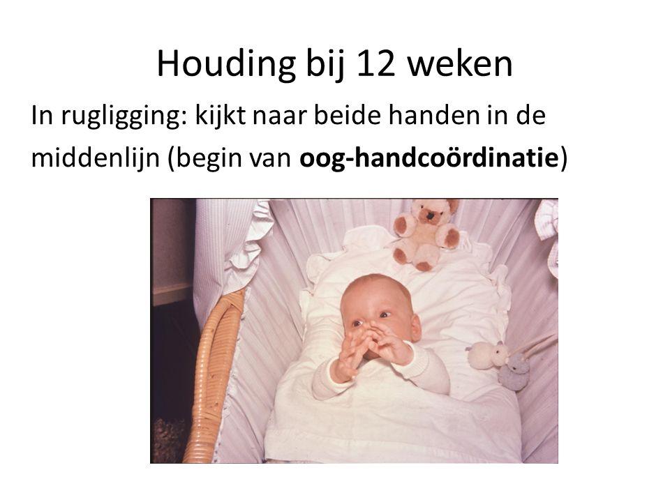Houding bij 12 weken In rugligging: kijkt naar beide handen in de middenlijn (begin van oog-handcoördinatie)
