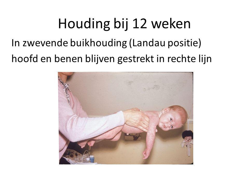Houding bij 12 weken In zwevende buikhouding (Landau positie) hoofd en benen blijven gestrekt in rechte lijn