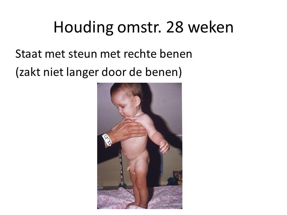 Houding omstr. 28 weken Staat met steun met rechte benen (zakt niet langer door de benen)