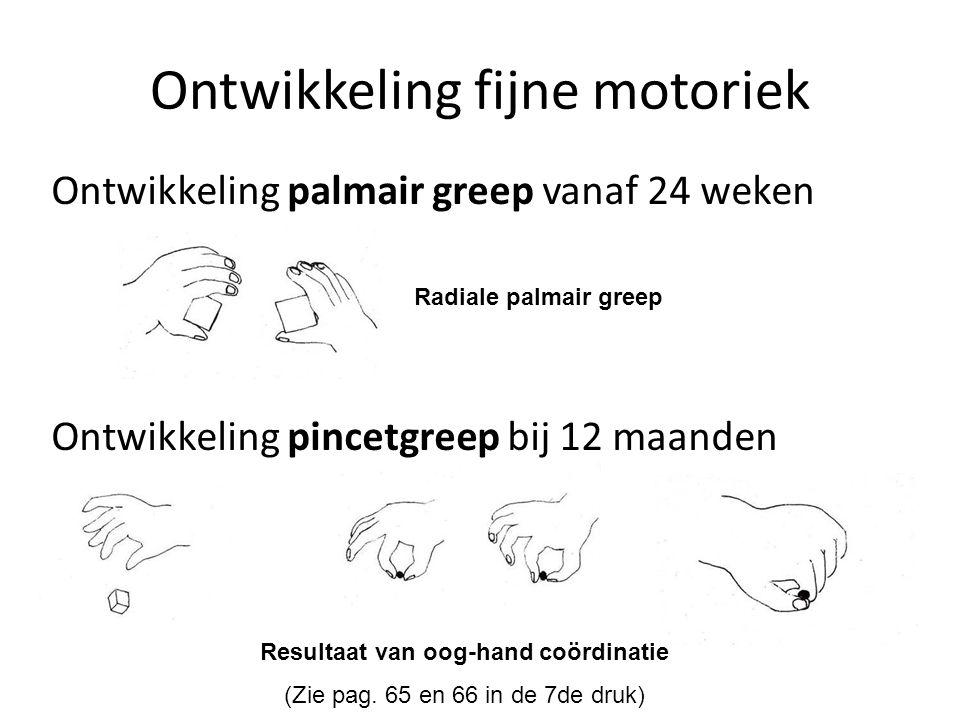 Ontwikkeling palmair greep vanaf 24 weken Ontwikkeling pincetgreep bij 12 maanden Ontwikkeling fijne motoriek Resultaat van oog-hand coördinatie (Zie