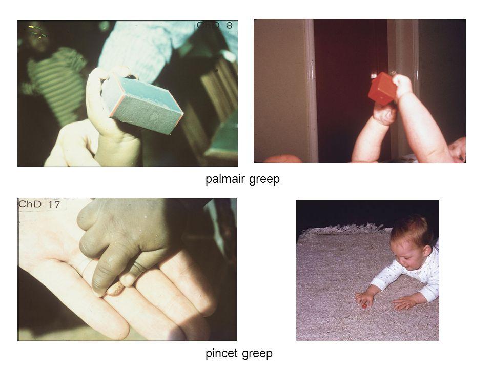 palmair greep pincet greep