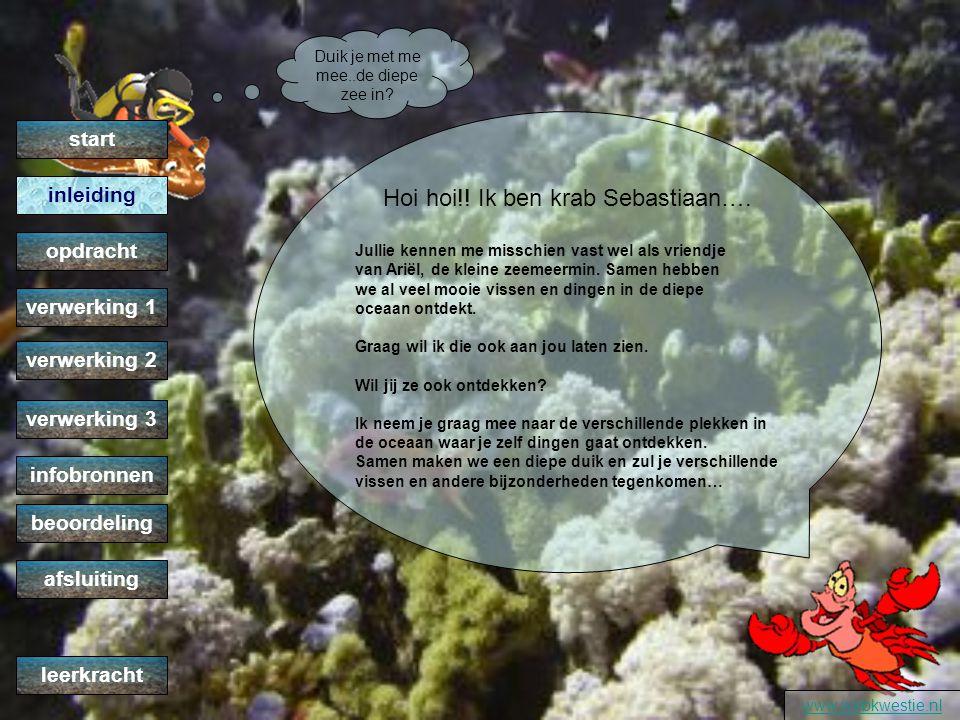 Een kijkje in de oceaan met Sebastiaan www.webkwestie.nl verwerking 2 verwerking 1 opdracht inleiding start verwerking 3 infobronnen beoordeling afslu