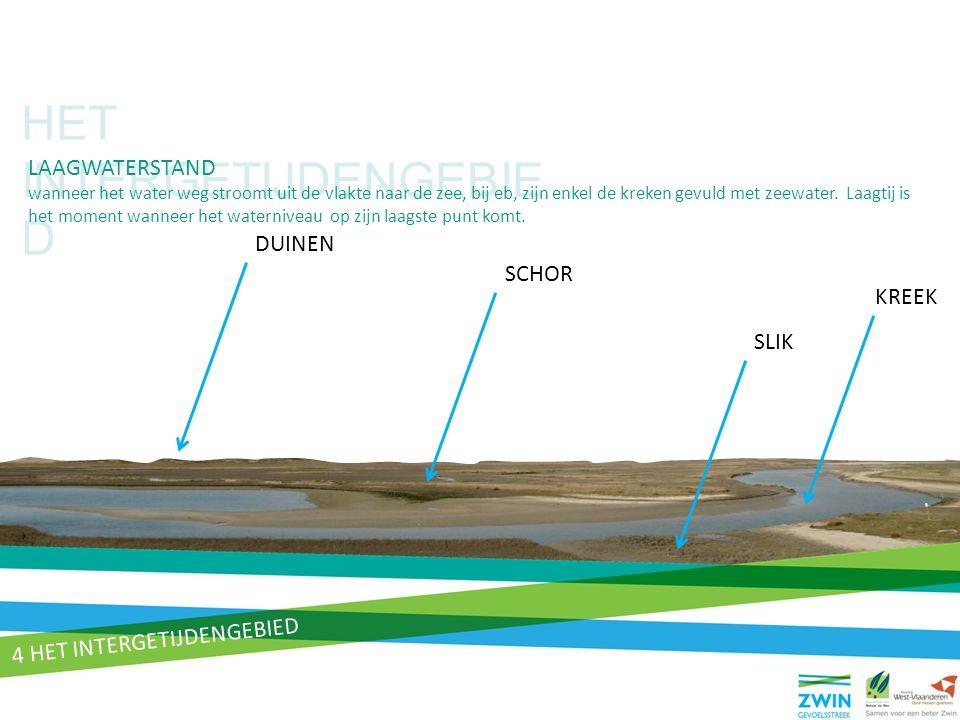 HET INTERGETIJDENGEBIE D LAAGWATERSTAND wanneer het water weg stroomt uit de vlakte naar de zee, bij eb, zijn enkel de kreken gevuld met zeewater. Laa