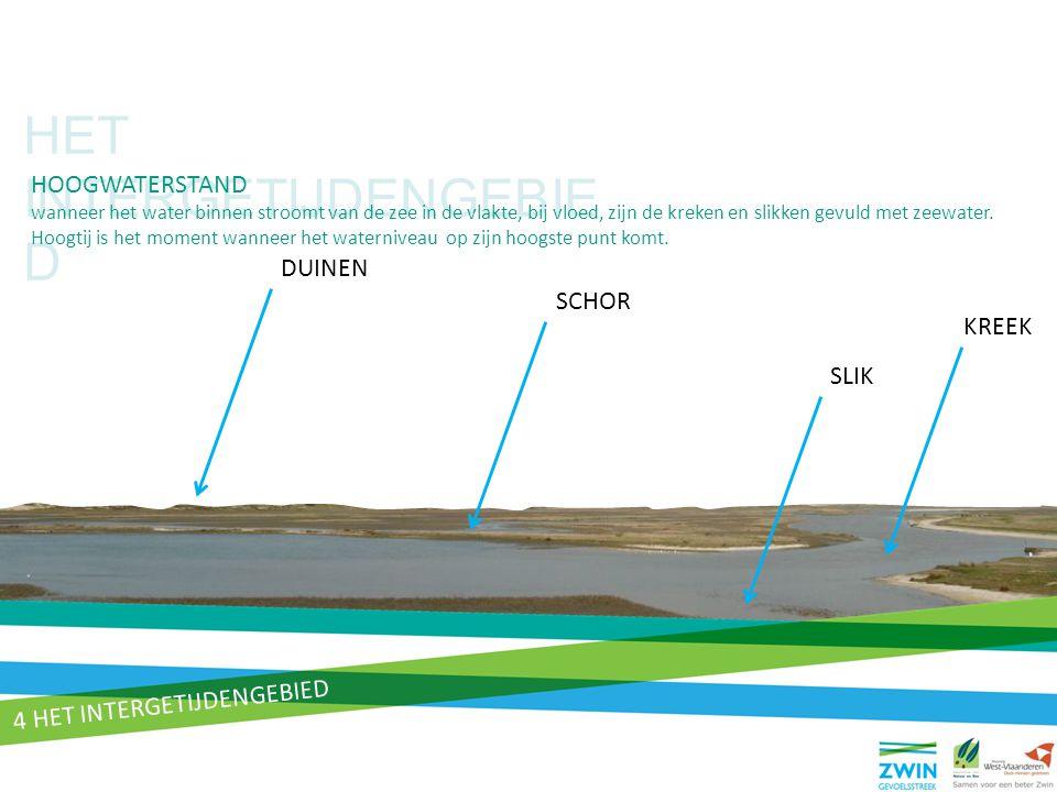 HET INTERGETIJDENGEBIE D DUINEN SLIK KREEK SCHOR HOOGWATERSTAND wanneer het water binnen stroomt van de zee in de vlakte, bij vloed, zijn de kreken en