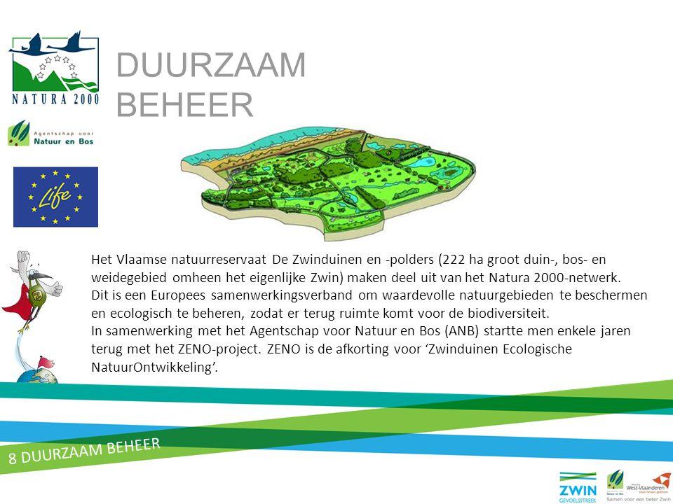 8 DUURZAAM BEHEER Het Vlaamse natuurreservaat De Zwinduinen en -polders (222 ha groot duin-, bos- en weidegebied omheen het eigenlijke Zwin) maken dee