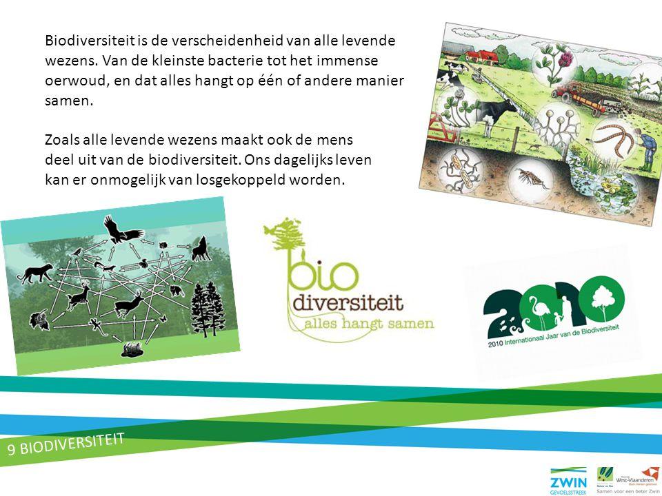 9 BIODIVERSITEIT Biodiversiteit is de verscheidenheid van alle levende wezens. Van de kleinste bacterie tot het immense oerwoud, en dat alles hangt op