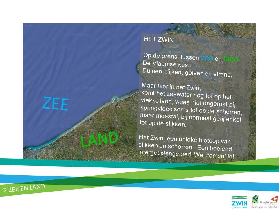 ZEE LAND HET ZWIN Op de grens, tussen zee en land, De Vlaamse kust. Duinen, dijken, golven en strand, Maar hier in het Zwin, komt het zeewater nog tot
