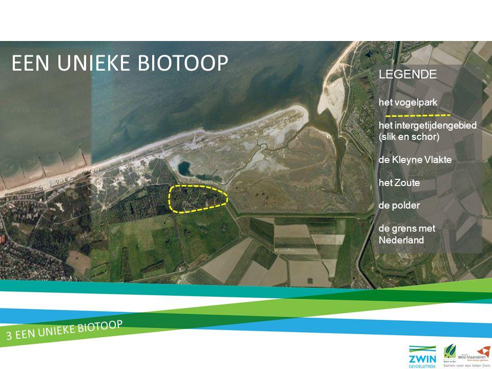 EEN UNIEKE BIOTOOP LEGENDE het vogelpark het intergetijdengebied (slik en schor) de Kleyne Vlakte het Zoute de polder de grens met Nederland 3 EEN UNI