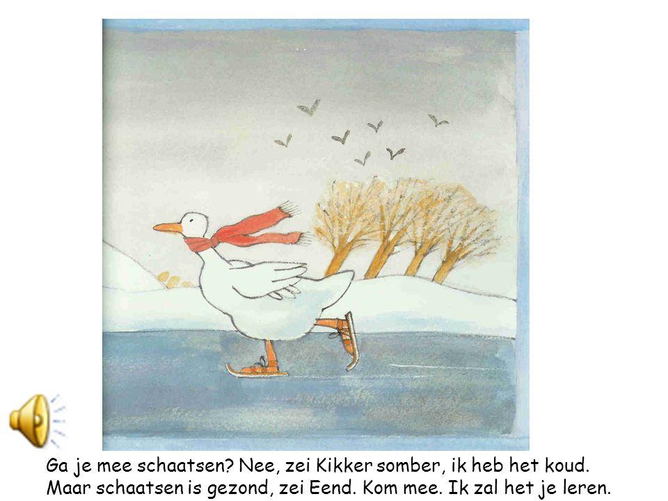Bibberend van de kou zat Kikker op de oever.Daar kwam Eend aanschaatsen.