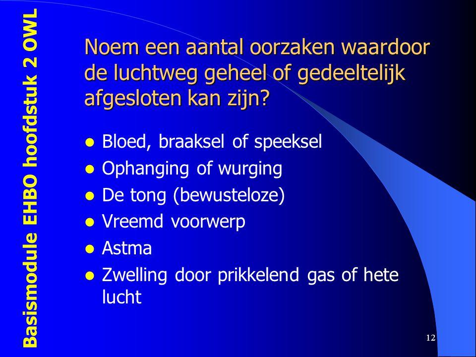 Basismodule EHBO hoofdstuk 2 OWL 12 Noem een aantal oorzaken waardoor de luchtweg geheel of gedeeltelijk afgesloten kan zijn?  Bloed, braaksel of spe