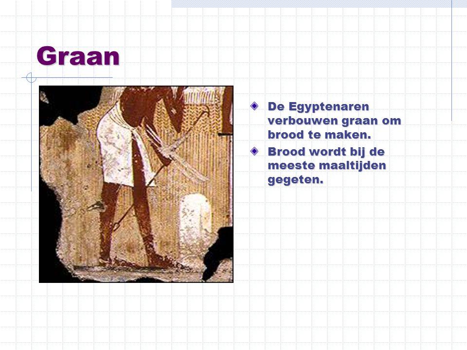 Graan De Egyptenaren verbouwen graan om brood te maken. Brood wordt bij de meeste maaltijden gegeten.