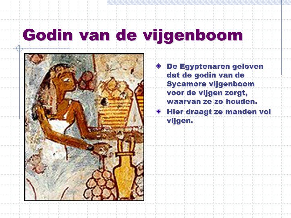Godin van de vijgenboom De Egyptenaren geloven dat de godin van de Sycamore vijgenboom voor de vijgen zorgt, waarvan ze zo houden. Hier draagt ze mand