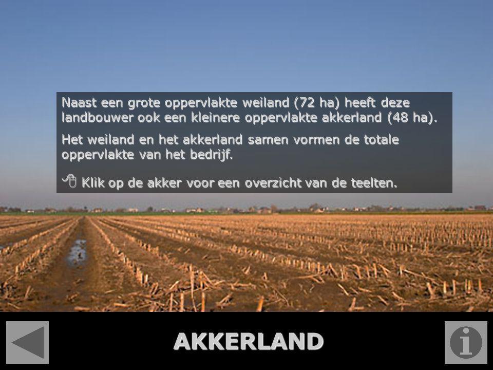AKKERLAND Naast een grote oppervlakte weiland (72 ha) heeft deze landbouwer ook een kleinere oppervlakte akkerland (48 ha). Het weiland en het akkerla