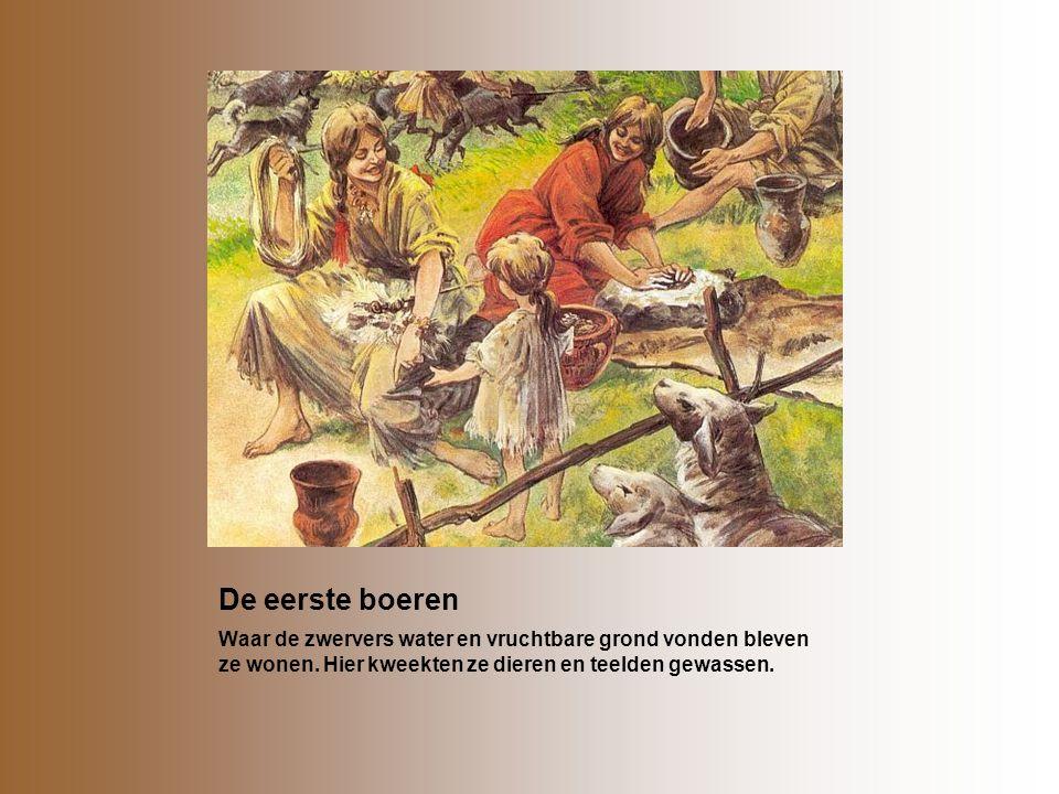 De eerste boeren Waar de zwervers water en vruchtbare grond vonden bleven ze wonen. Hier kweekten ze dieren en teelden gewassen.