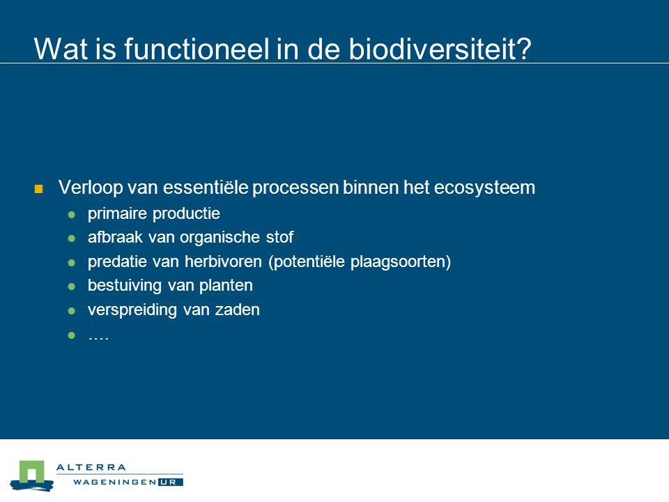 Wat is functioneel in de biodiversiteit?  Verloop van essentiële processen binnen het ecosysteem  primaire productie  afbraak van organische stof 