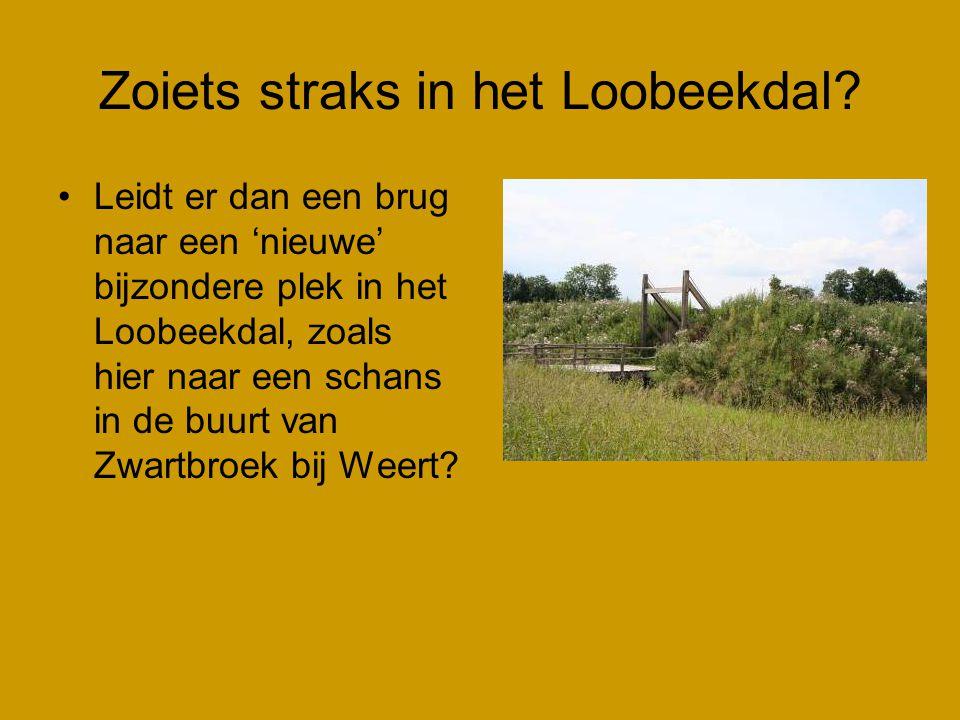 Zoiets straks in het Loobeekdal? •Leidt er dan een brug naar een 'nieuwe' bijzondere plek in het Loobeekdal, zoals hier naar een schans in de buurt va