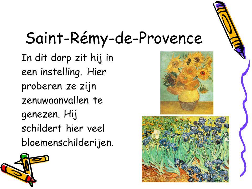 Saint-Rémy-de-Provence In dit dorp zit hij in een instelling.