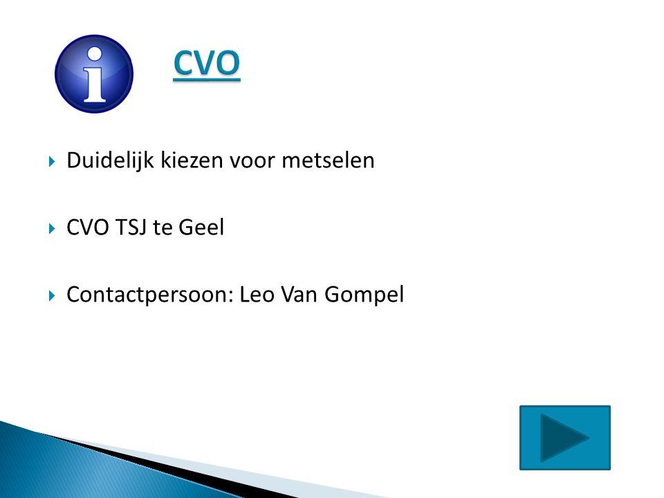  Duidelijk kiezen voor metselen  CVO TSJ te Geel  Contactpersoon: Leo Van Gompel
