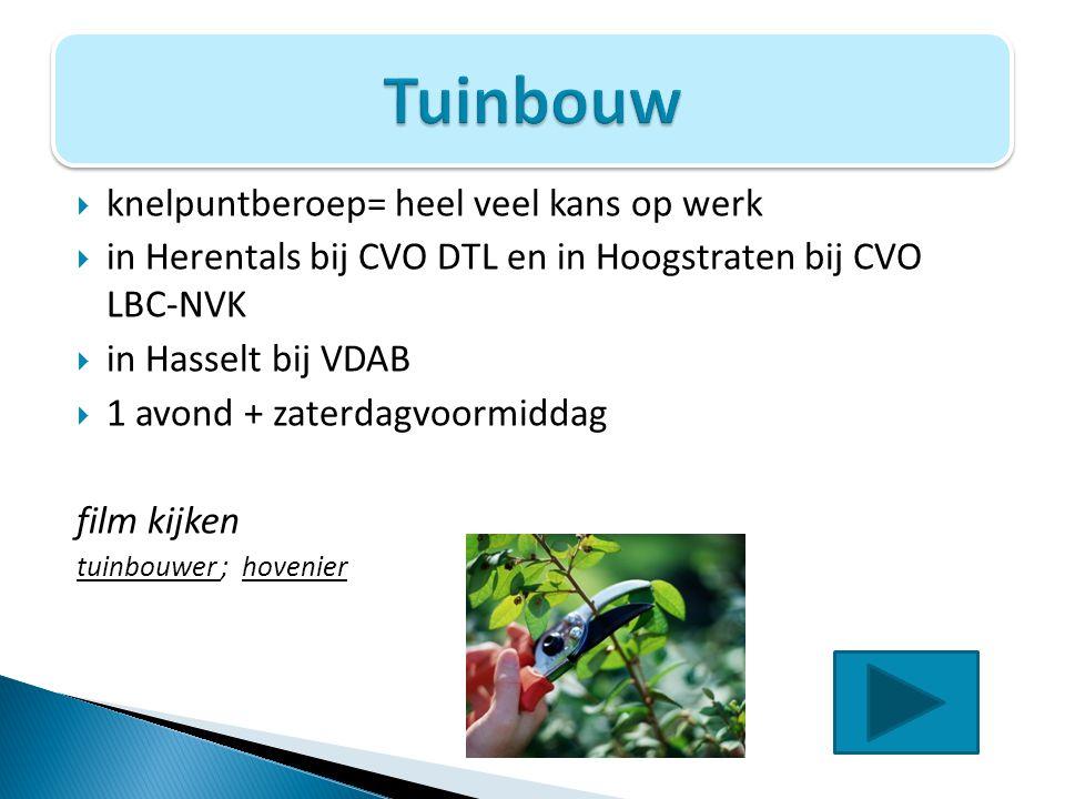  knelpuntberoep= heel veel kans op werk  in Herentals bij CVO DTL en in Hoogstraten bij CVO LBC-NVK  in Hasselt bij VDAB  1 avond + zaterdagvoormi