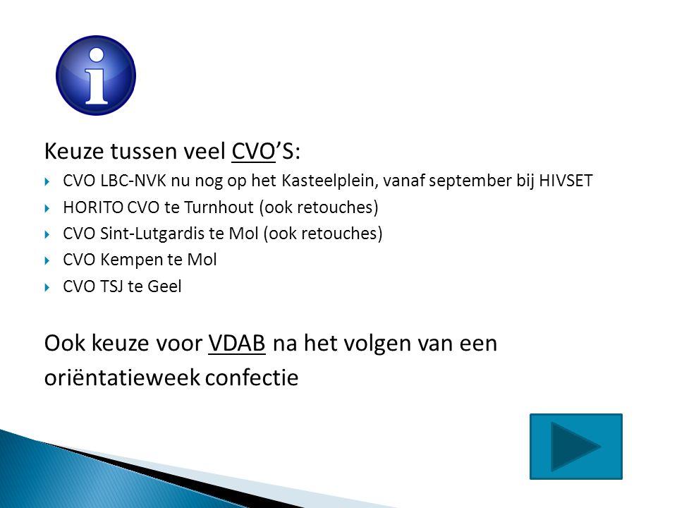 Keuze tussen veel CVO'S:  CVO LBC-NVK nu nog op het Kasteelplein, vanaf september bij HIVSET  HORITO CVO te Turnhout (ook retouches)  CVO Sint-Lutg