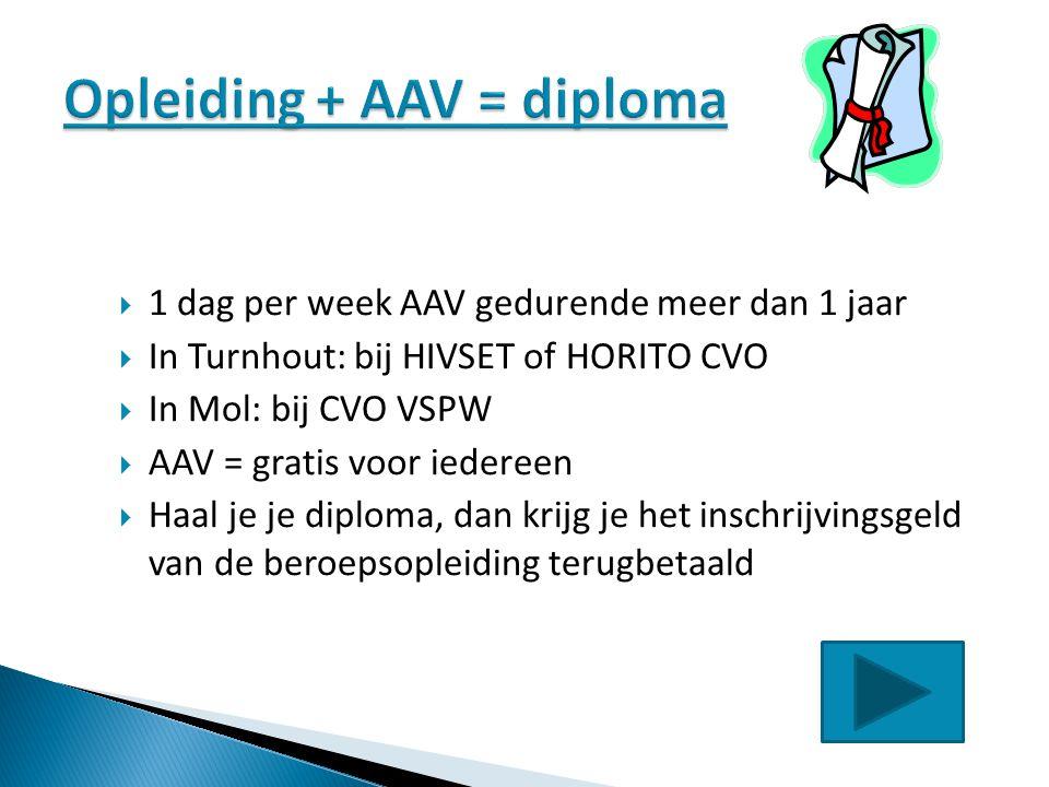  1 dag per week AAV gedurende meer dan 1 jaar  In Turnhout: bij HIVSET of HORITO CVO  In Mol: bij CVO VSPW  AAV = gratis voor iedereen  Haal je j