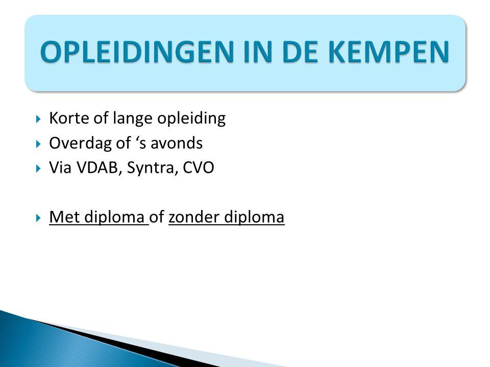  Korte of lange opleiding  Overdag of 's avonds  Via VDAB, Syntra, CVO  Met diploma of zonder diploma Met diploma zonder diploma