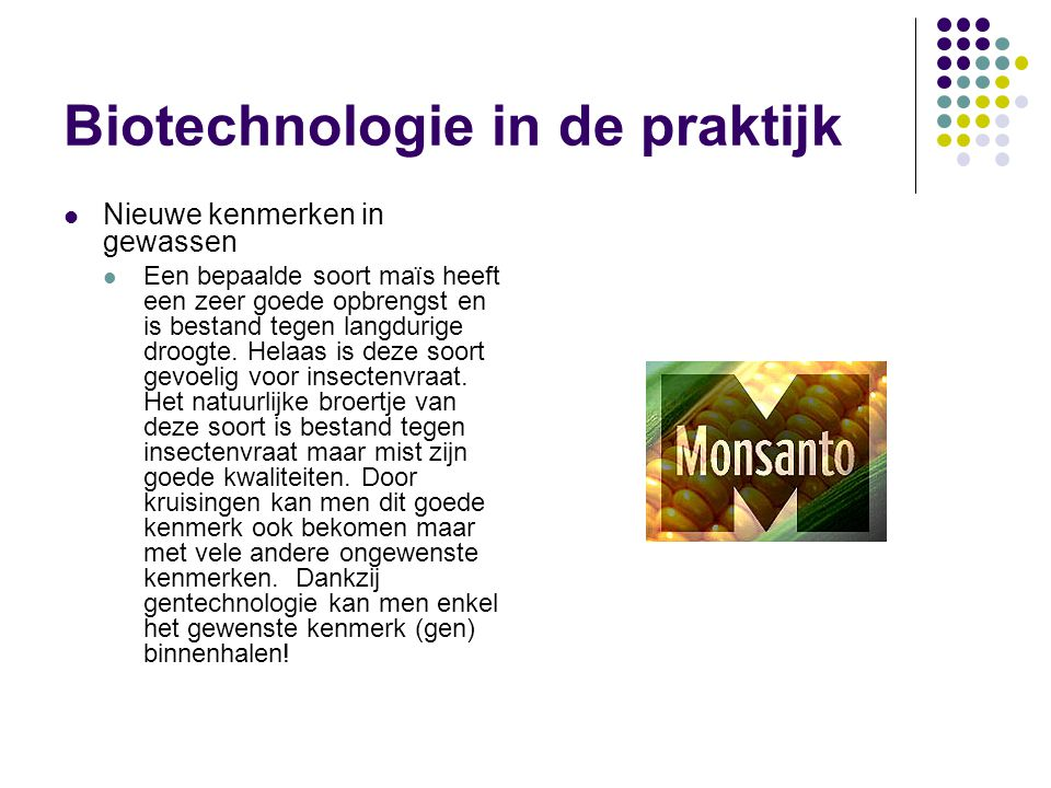 Biotechnologie in de praktijk  Nieuwe kenmerken in gewassen  Een bepaalde soort maïs heeft een zeer goede opbrengst en is bestand tegen langdurige droogte.