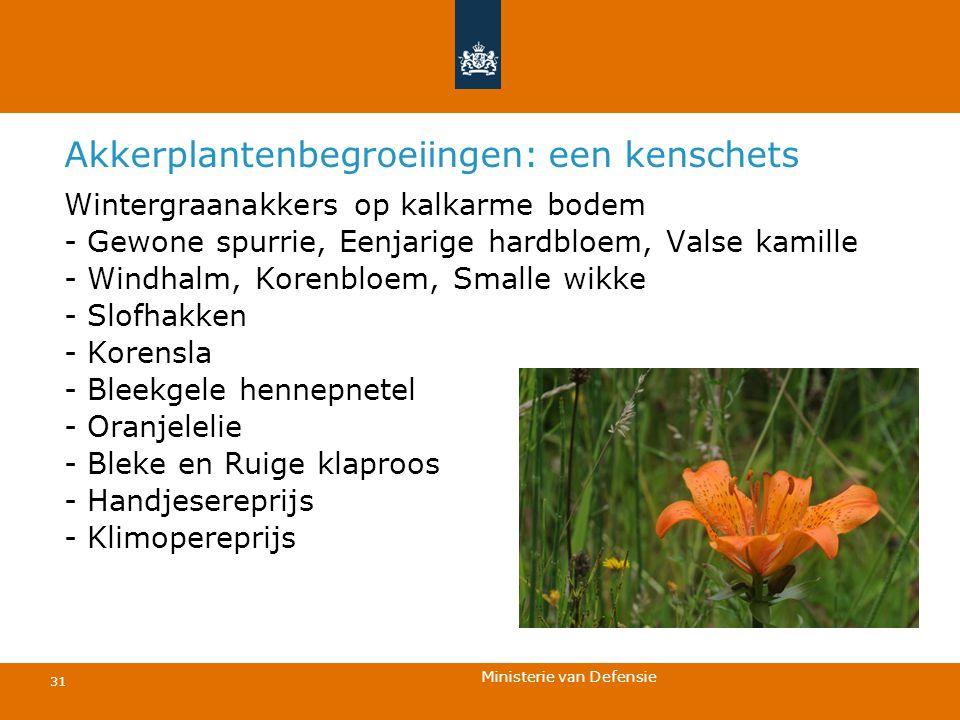 Ministerie van Defensie 31 Akkerplantenbegroeiingen: een kenschets Wintergraanakkers op kalkarme bodem - Gewone spurrie, Eenjarige hardbloem, Valse ka
