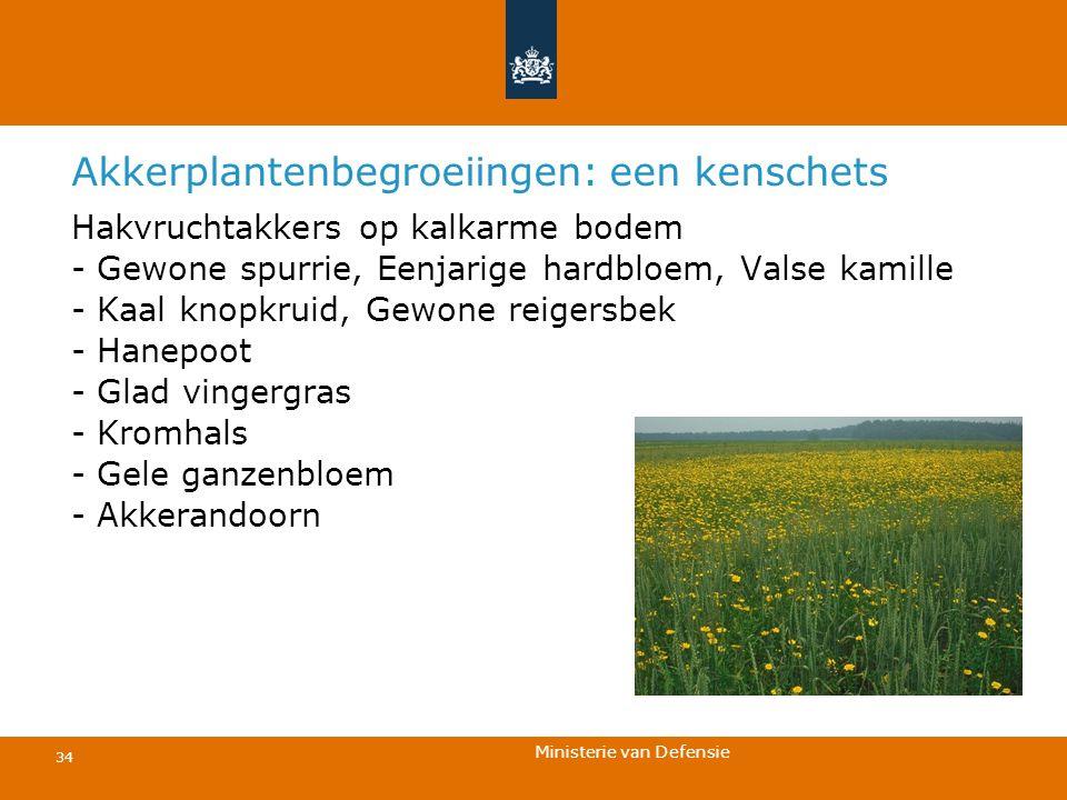 Ministerie van Defensie 34 Akkerplantenbegroeiingen: een kenschets Hakvruchtakkers op kalkarme bodem - Gewone spurrie, Eenjarige hardbloem, Valse kami