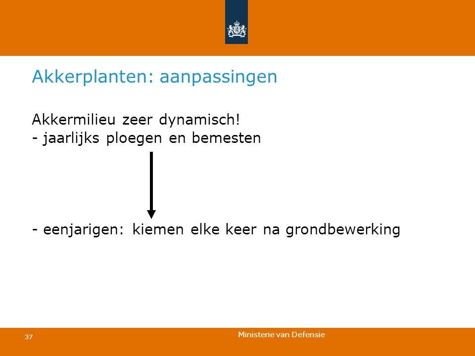 Ministerie van Defensie 37 Akkerplanten: aanpassingen Akkermilieu zeer dynamisch! - jaarlijks ploegen en bemesten - eenjarigen: kiemen elke keer na gr