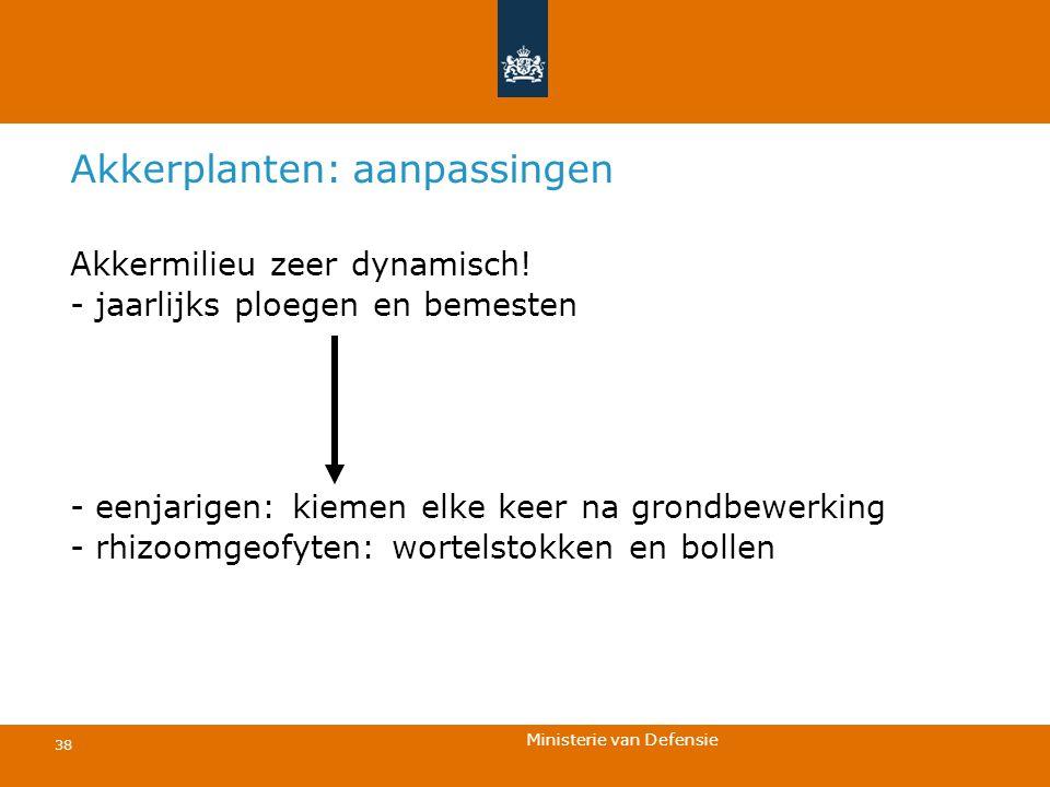 Ministerie van Defensie 38 Akkerplanten: aanpassingen Akkermilieu zeer dynamisch! - jaarlijks ploegen en bemesten - eenjarigen: kiemen elke keer na gr