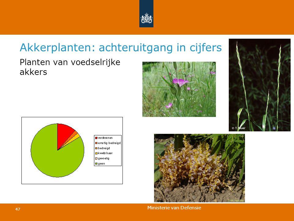 Ministerie van Defensie 47 Akkerplanten: achteruitgang in cijfers Planten van voedselrijke akkers