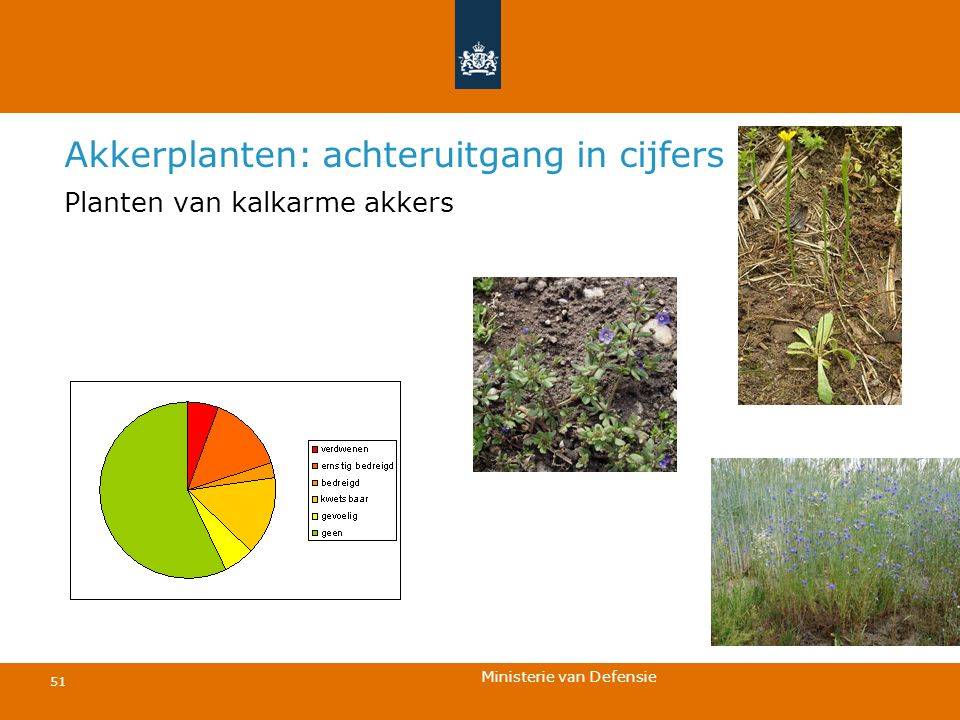 Ministerie van Defensie 51 Akkerplanten: achteruitgang in cijfers Planten van kalkarme akkers
