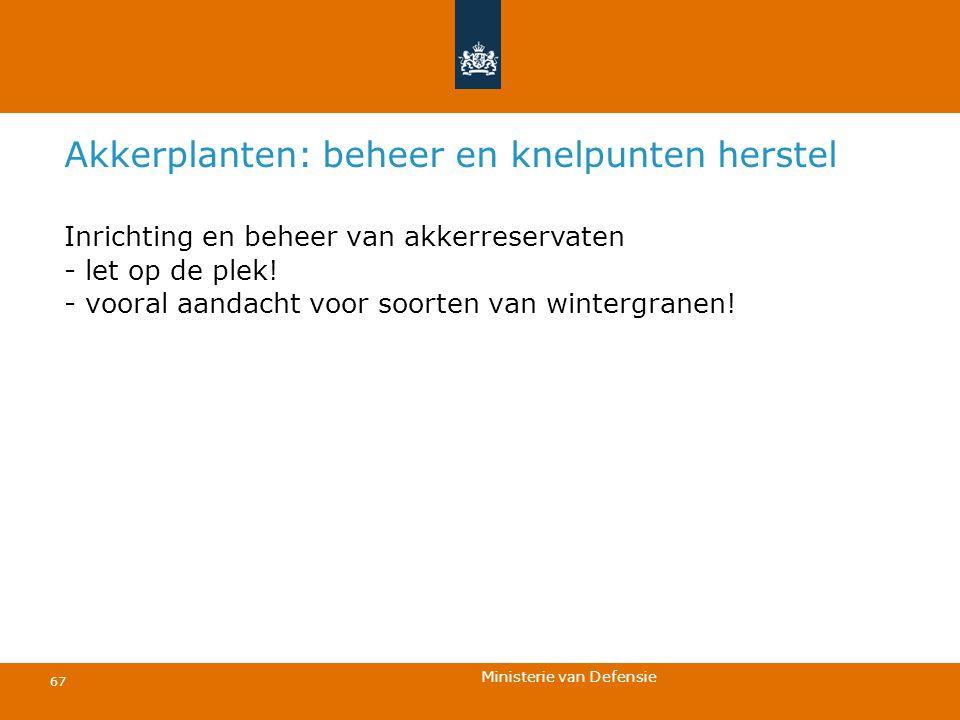Ministerie van Defensie 67 Akkerplanten: beheer en knelpunten herstel Inrichting en beheer van akkerreservaten - let op de plek! - vooral aandacht voo