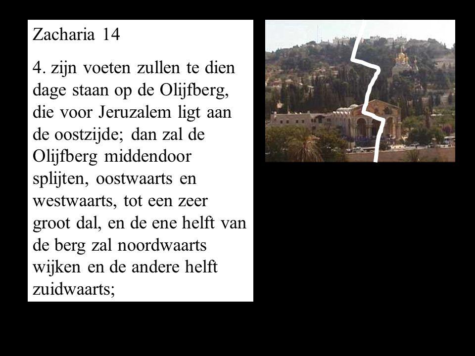 Zacharia 14 4. zijn voeten zullen te dien dage staan op de Olijfberg, die voor Jeruzalem ligt aan de oostzijde; dan zal de Olijfberg middendoor splijt