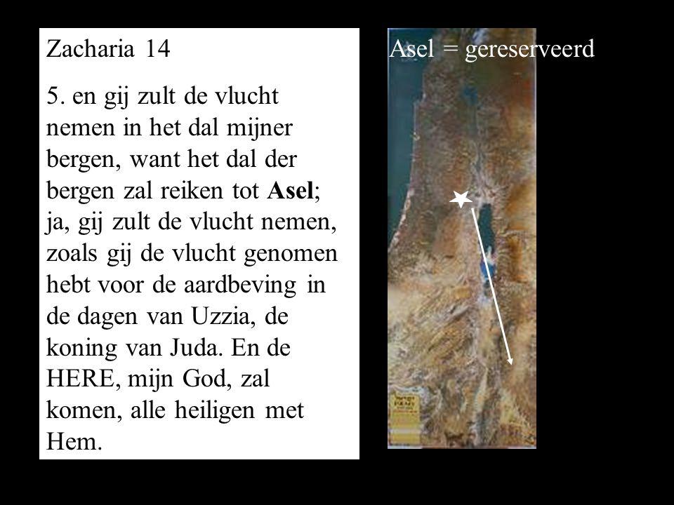 Zacharia 14 5. en gij zult de vlucht nemen in het dal mijner bergen, want het dal der bergen zal reiken tot Asel; ja, gij zult de vlucht nemen, zoals