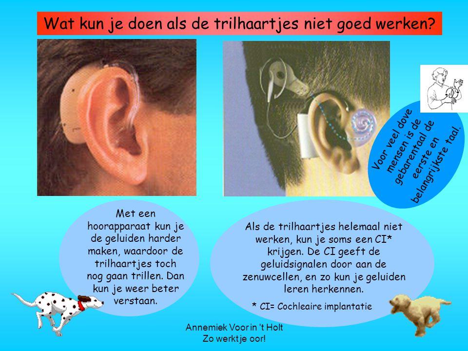 Annemiek Voor in t Holt Zo werkt je oor.Wat kun je doen als de trilhaartjes niet goed werken.