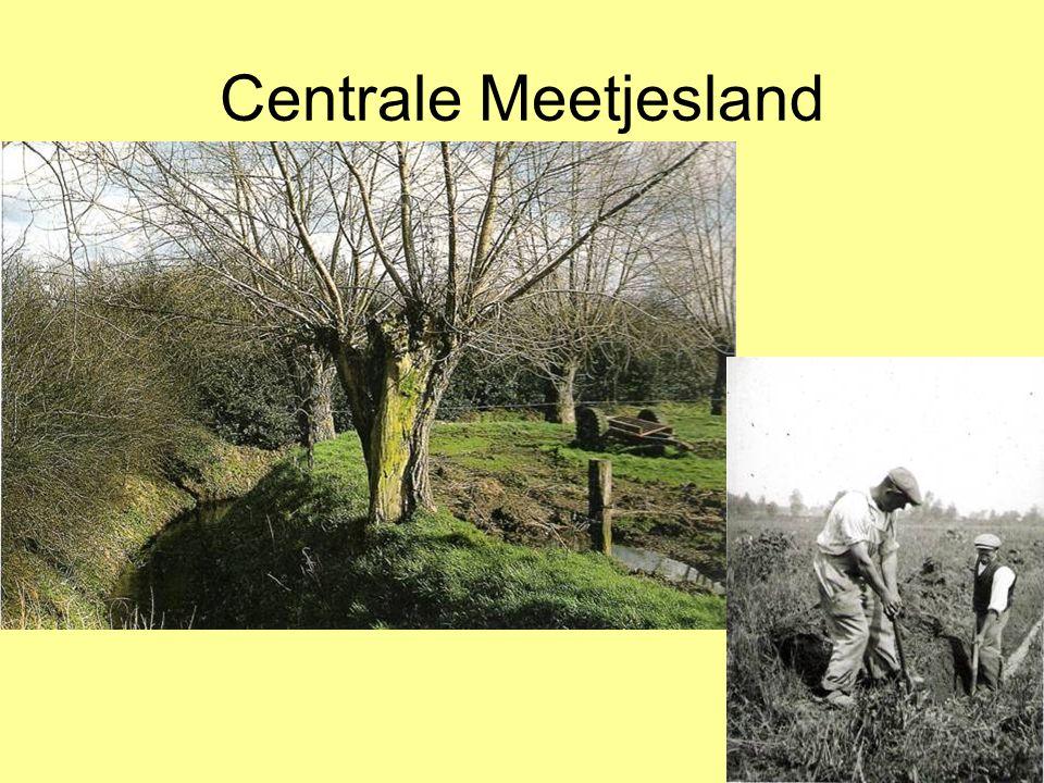Centrale Meetjesland